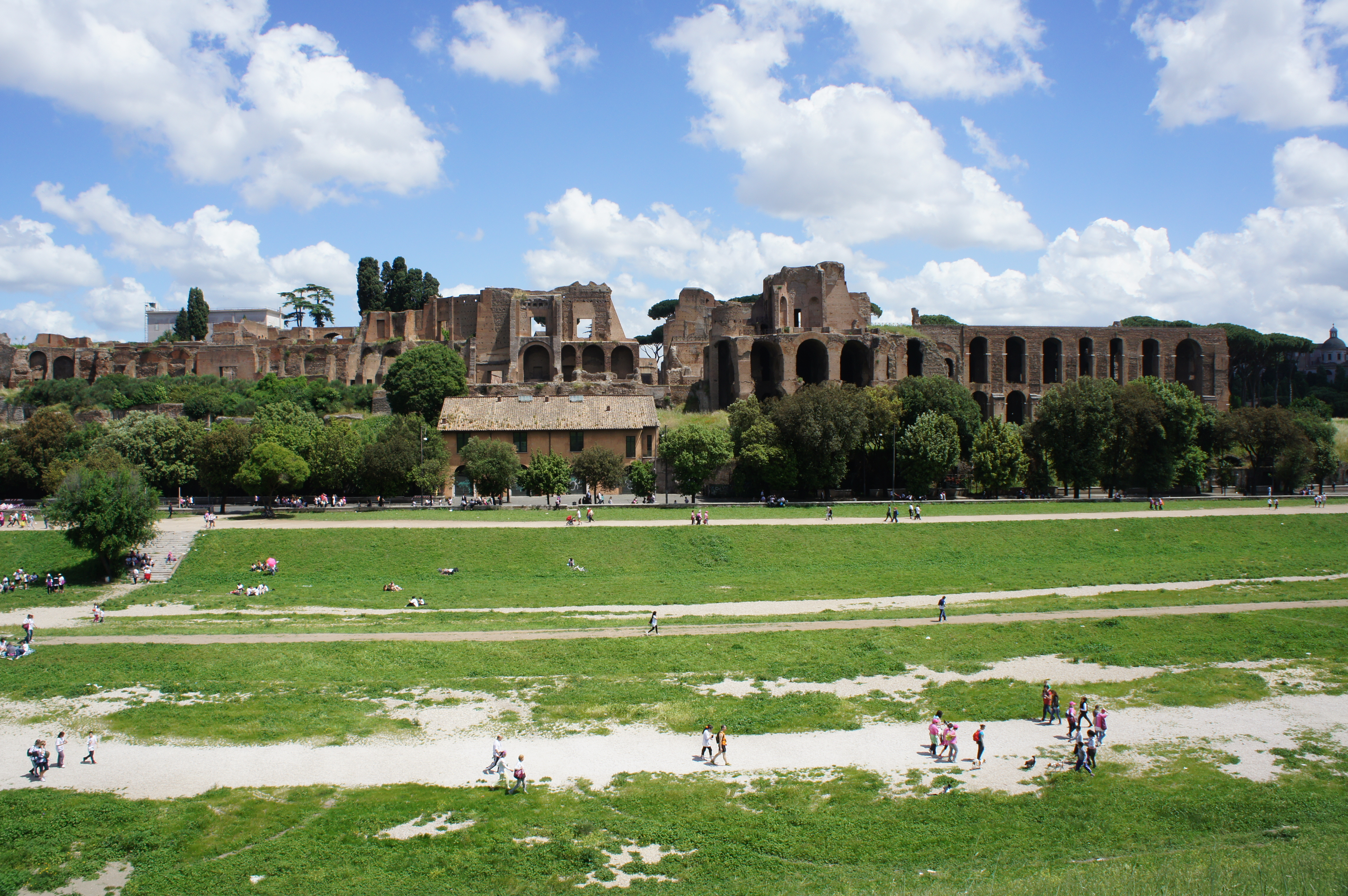 a day at the circus maximus essay